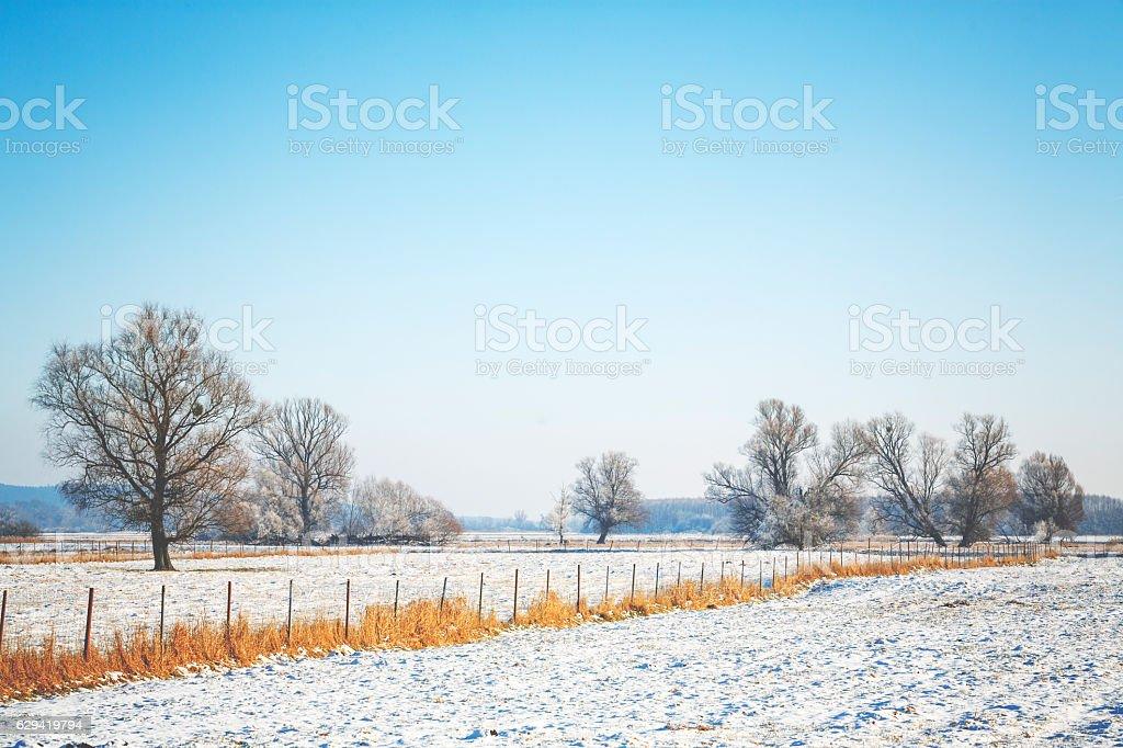 White winter landscape stock photo