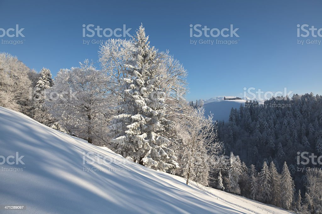 White Xmas, Winter's Tale, Beautiful Snowy Landscape in Central Switzerland royalty-free stock photo