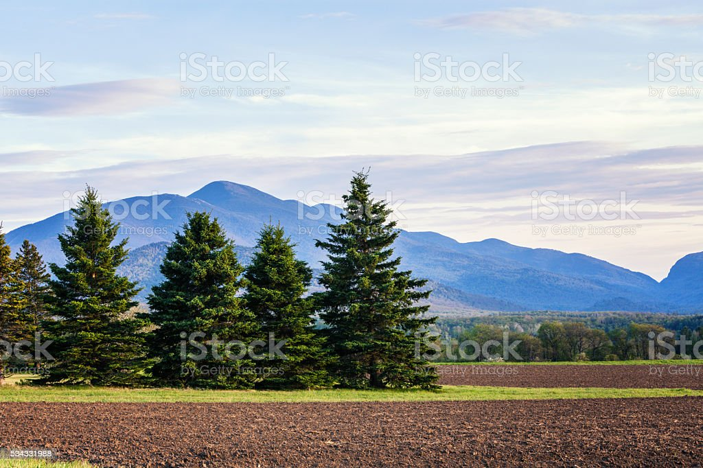 Whiteface Mountain Beyond Evergreens - Adirondack Mountains High Peaks stock photo