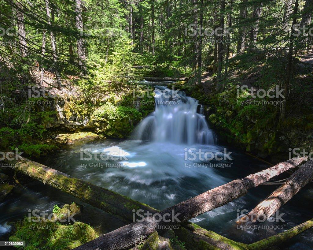 Whitehorse Falls, Oregon stock photo