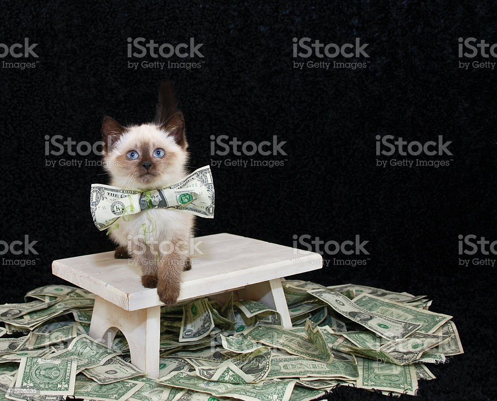 Who Ever Said Money Can't Buy Happiness. stock photo