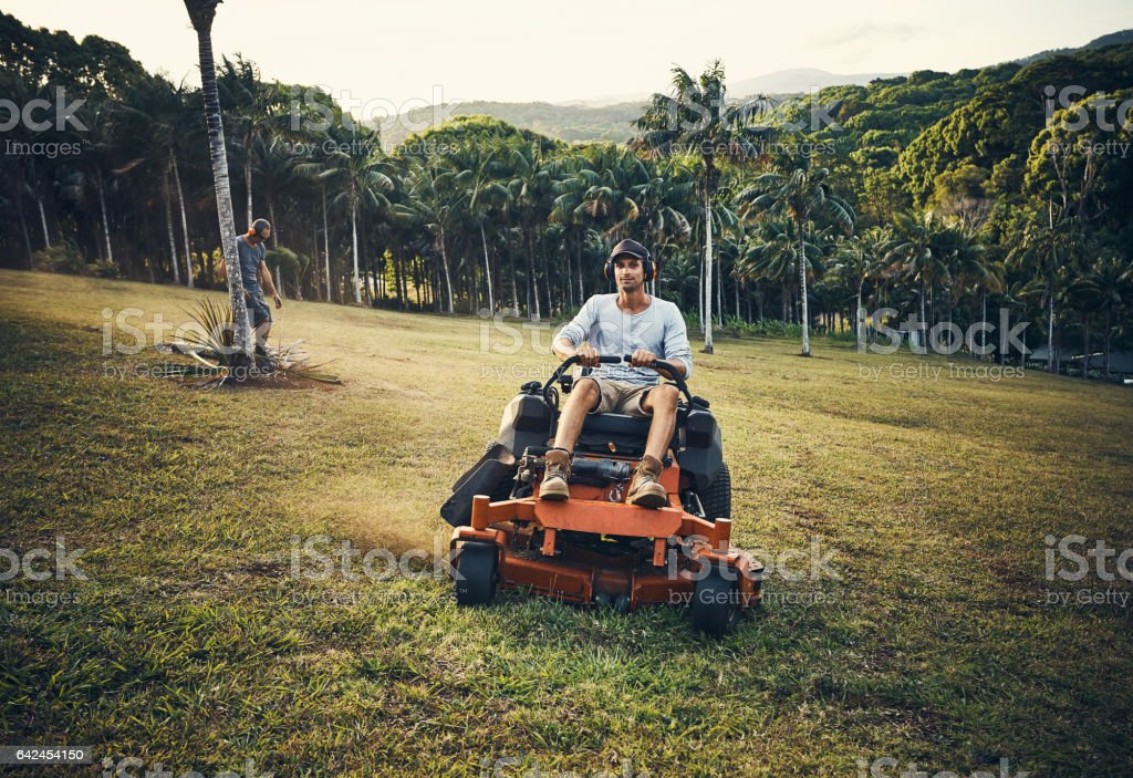 Who said mowing the lawn couldn't be fun? stock photo