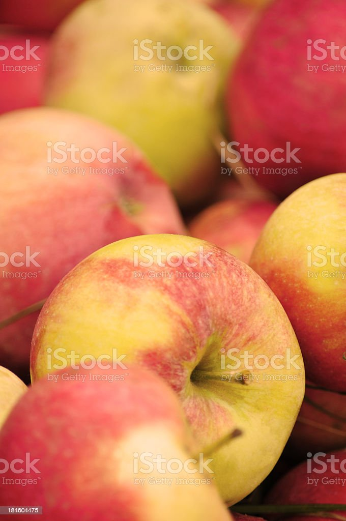 Whole apples background royalty-free stock photo