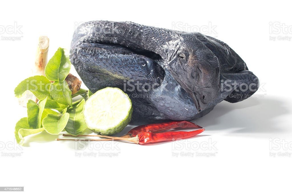 Whole Black Chicken and spices stock photo