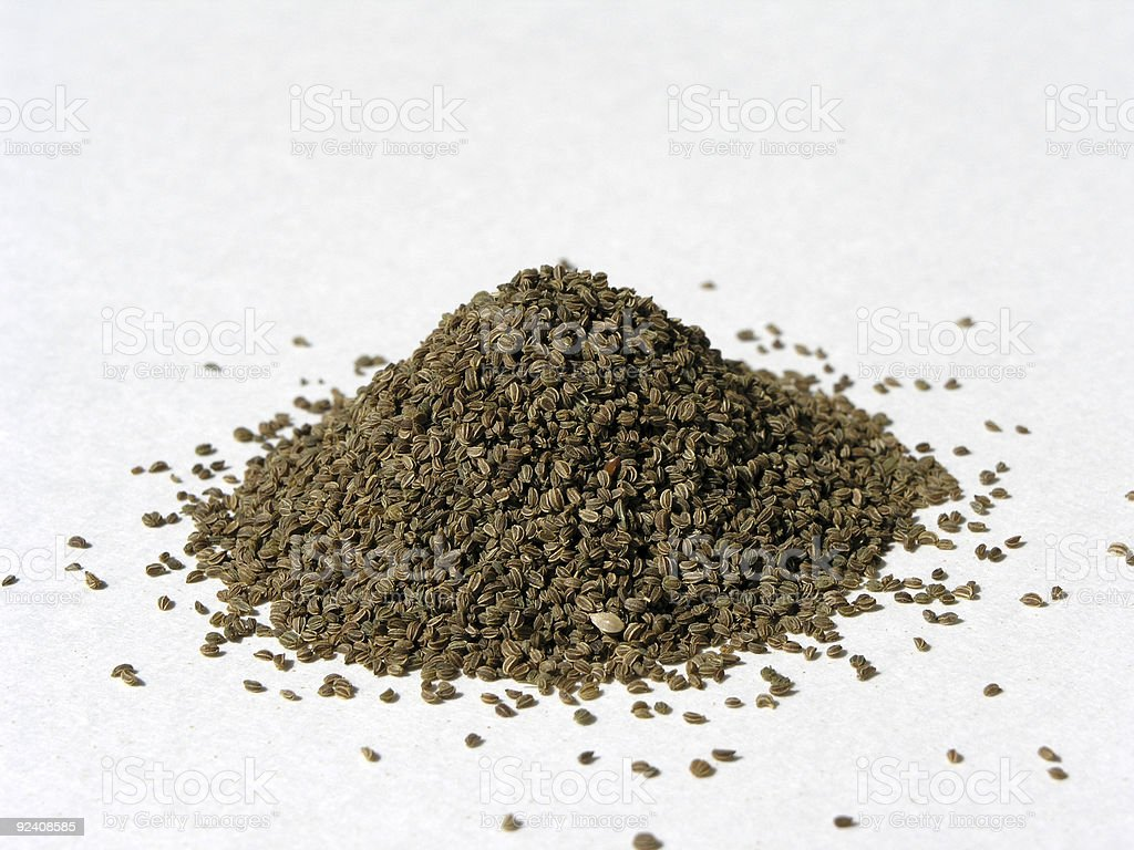 Whole Celery Seed 1 royalty-free stock photo