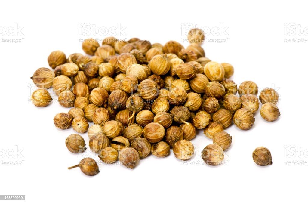 Whole coriander seeds on a white background stock photo