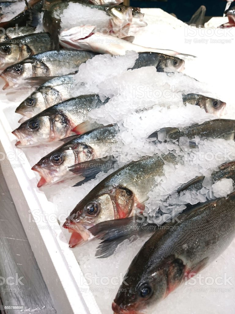 Whole fish on ice stock photo