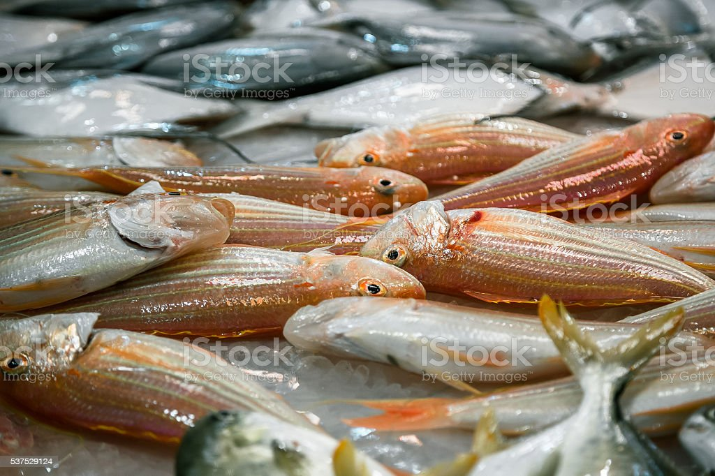 Whole Fishes in Market stock photo