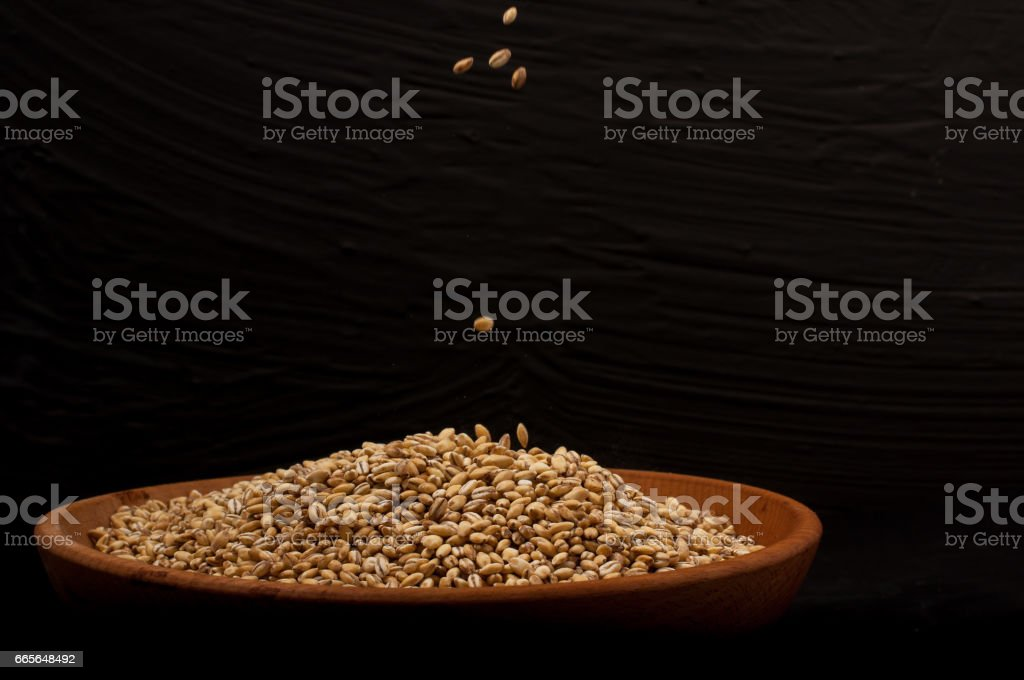 Whole grain of pearl barley or wheat spill on right black background. Agriculture food raw seed. stock photo