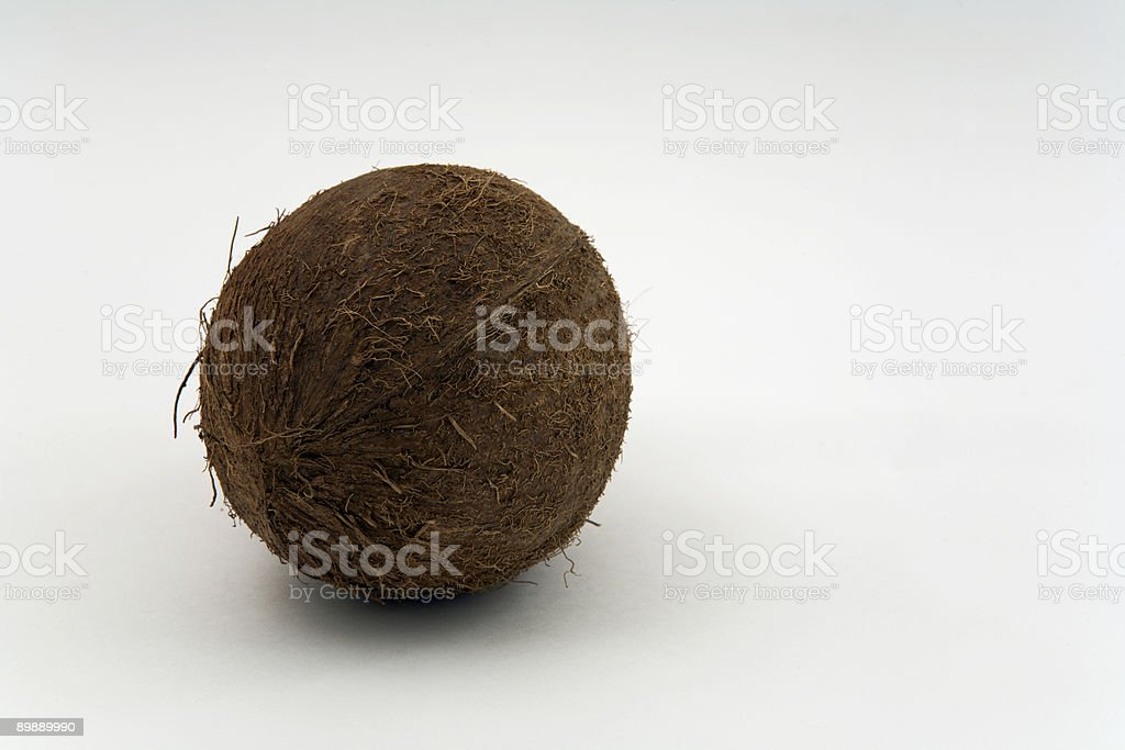 whole isolated coconut on white royalty-free stock photo