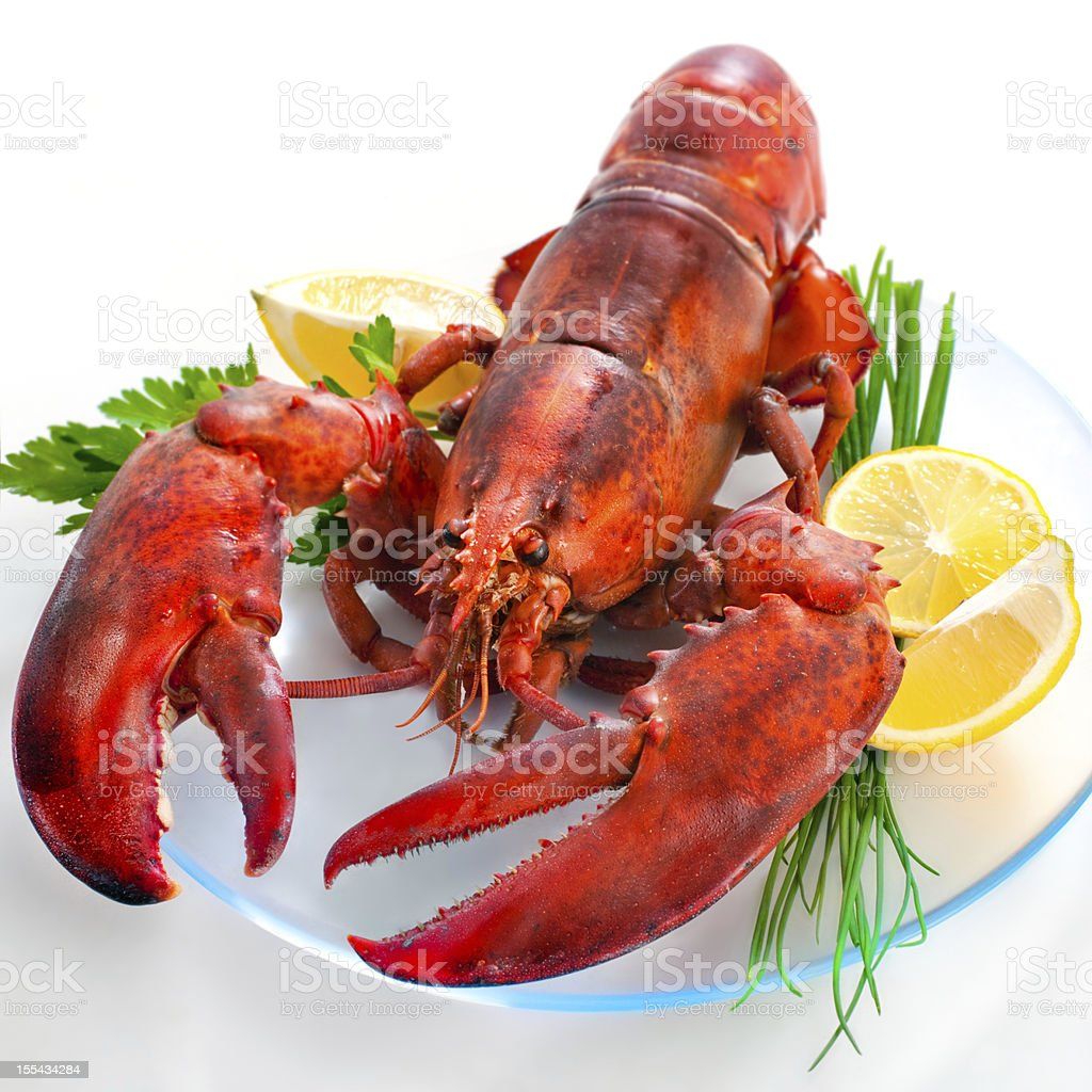 A whole lobster on a plate for dinner stock photo