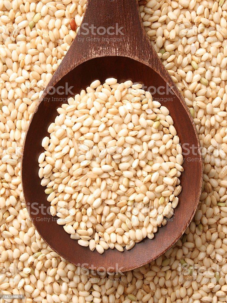 Whole mochi rice stock photo