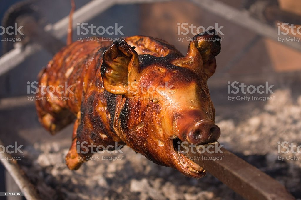 A whole pig being roasted on a fire stock photo