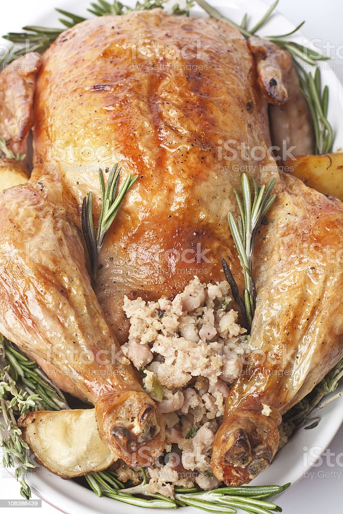 whole roasted stuffed turkey in a dish stock photo