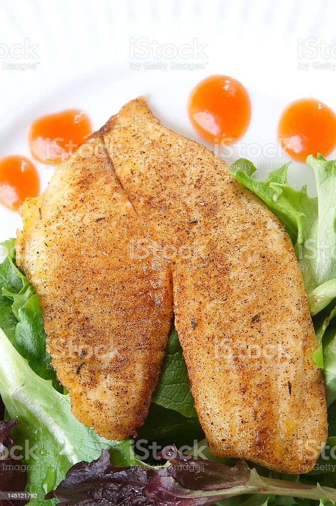 Whole season fillet of Tilapia stock photo
