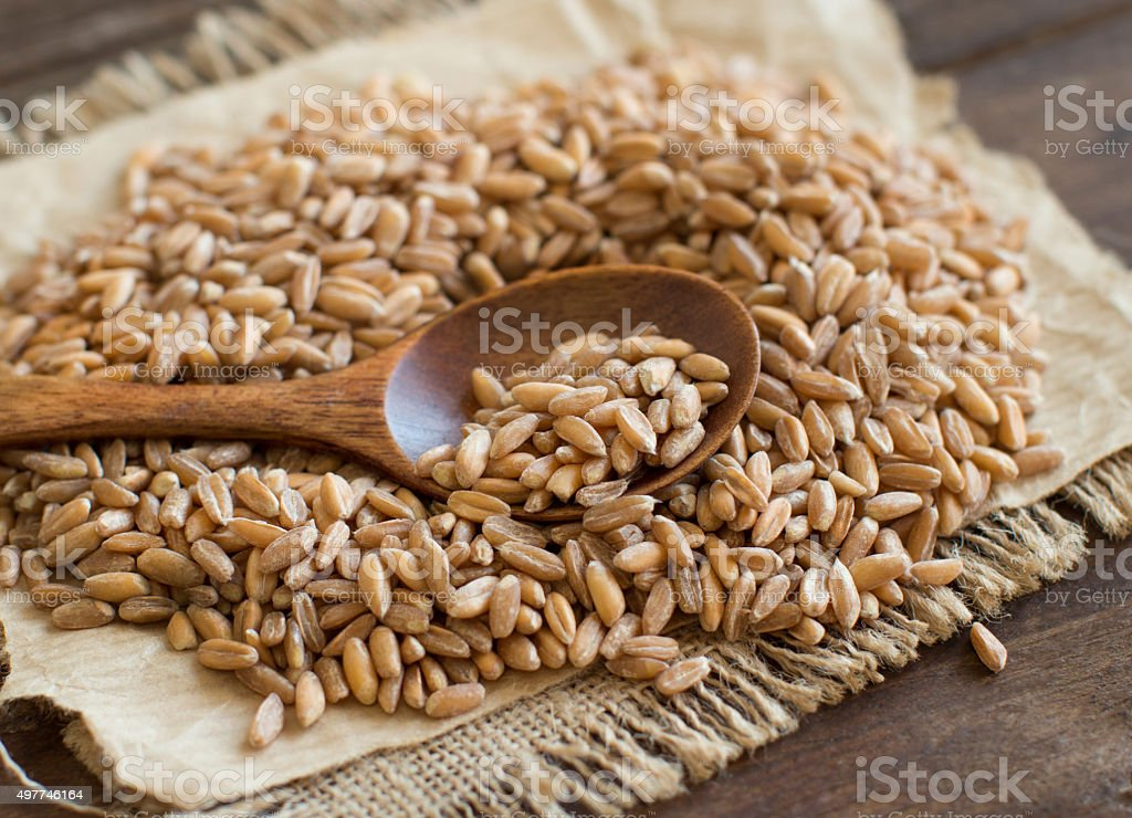 Whole unpolished spelt in a with a spoon stock photo