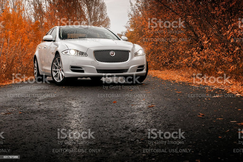 Whtie car Jaguar XJ on wet asphalt road at autumn stock photo