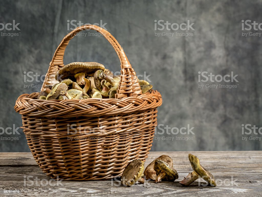 Wicker basket with mushrooms stock photo
