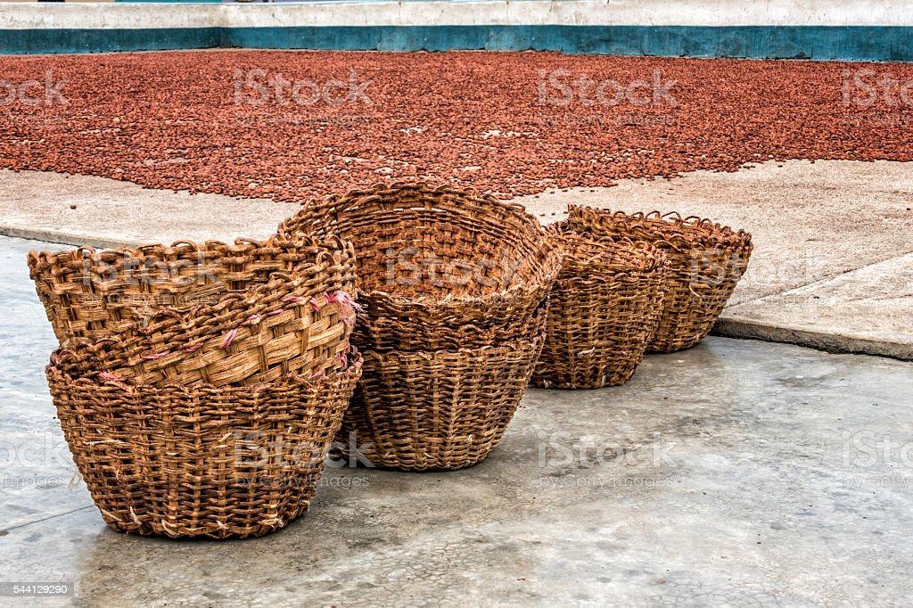 Wicker baskets and Cocoa drying beans on patio Chuao Venezuela stock photo