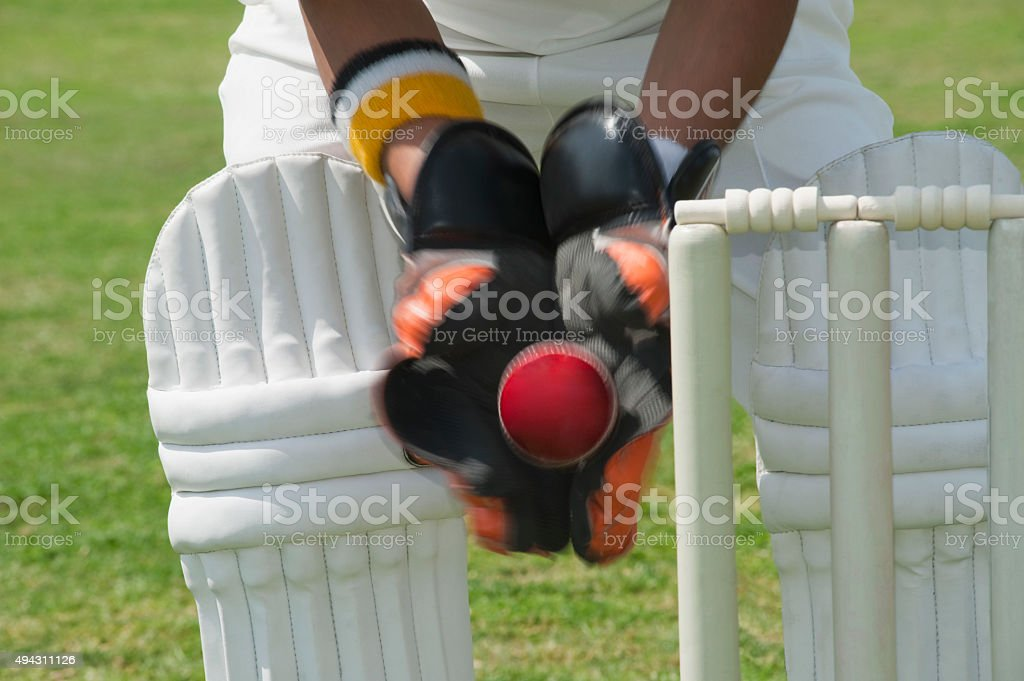 Wicket keeper standing behind stumps and catching a ball stock photo
