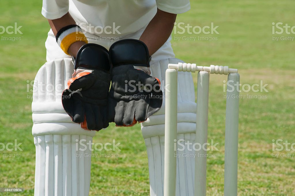 Wicket keeper standing behind stumps stock photo
