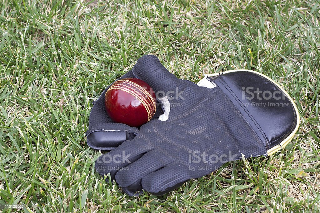 Wicket keeping stock photo