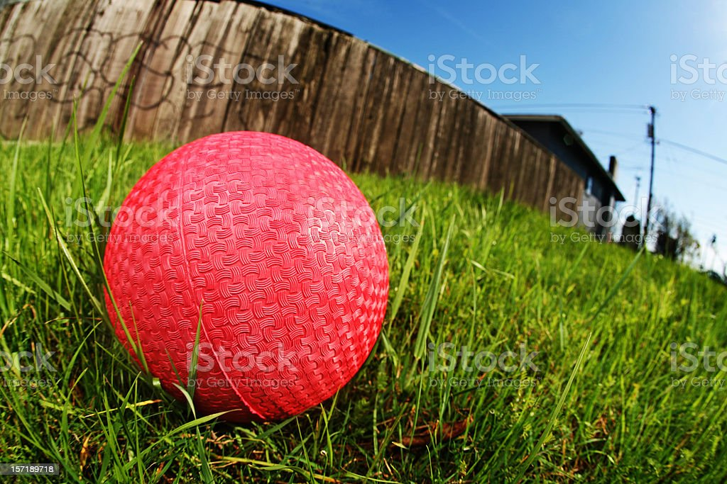 Wide Angle Dodge Ball on Grass stock photo