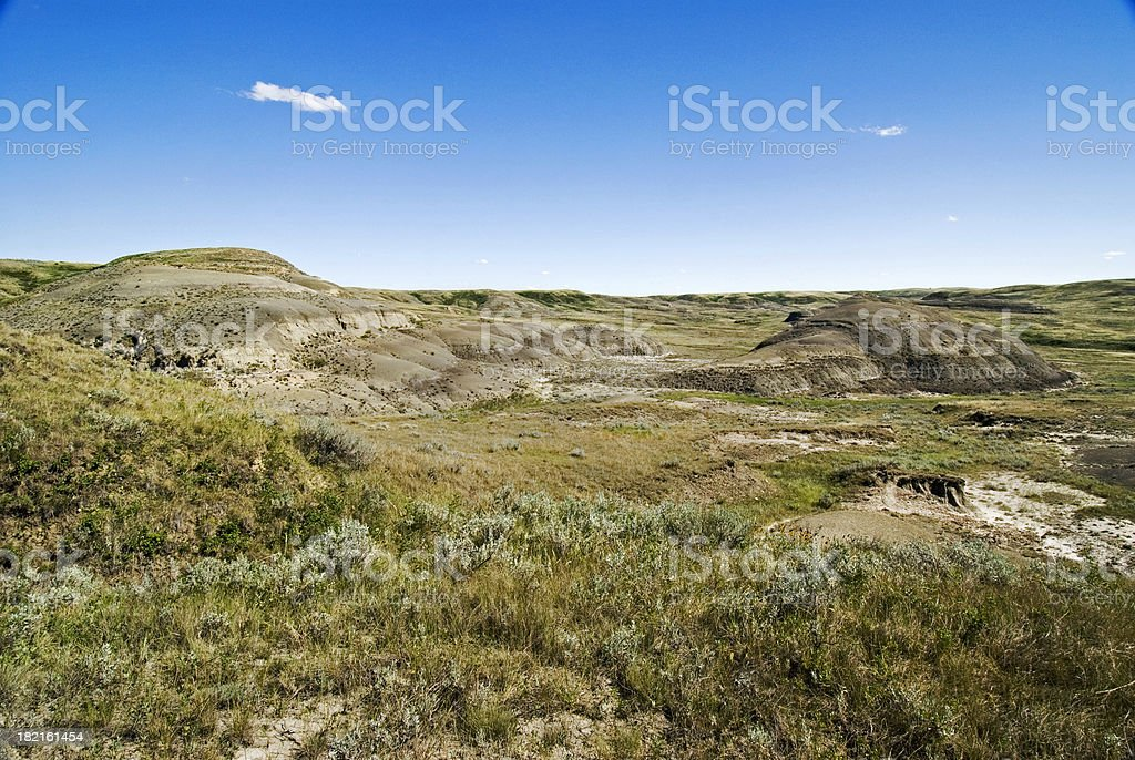 Wide angle view of Grassland park stock photo