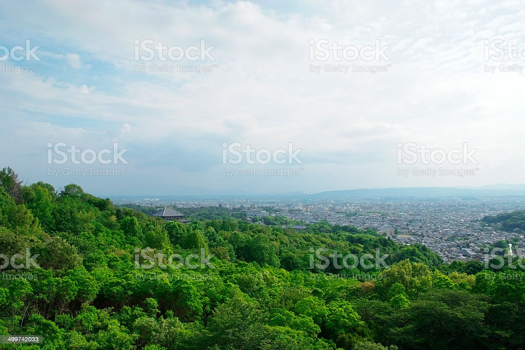 Wide angle view of Temple in forest stock photo