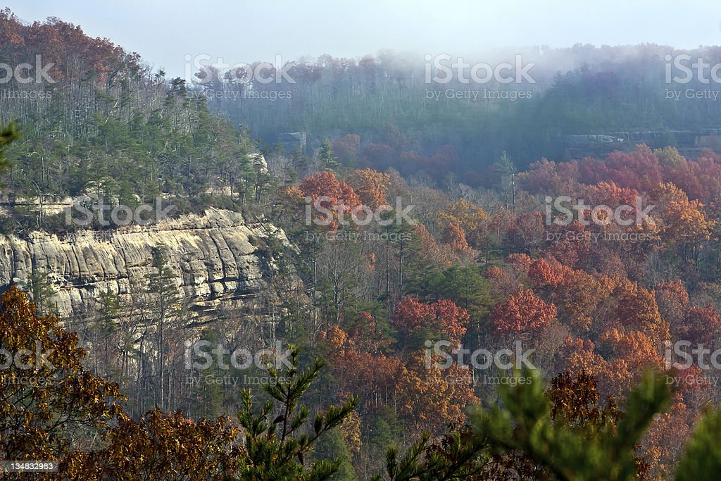 Wide fall landscape of a forest and a cliff stock photo