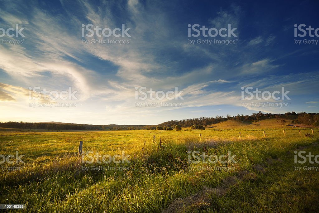 Wide Open Field stock photo