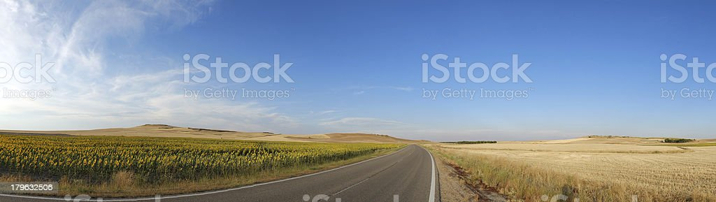 Wide Panoramic View royalty-free stock photo