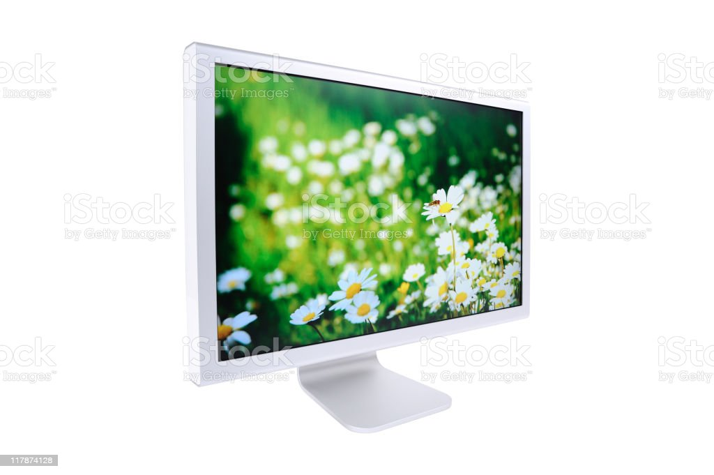 Wide screen monitor royalty-free stock photo
