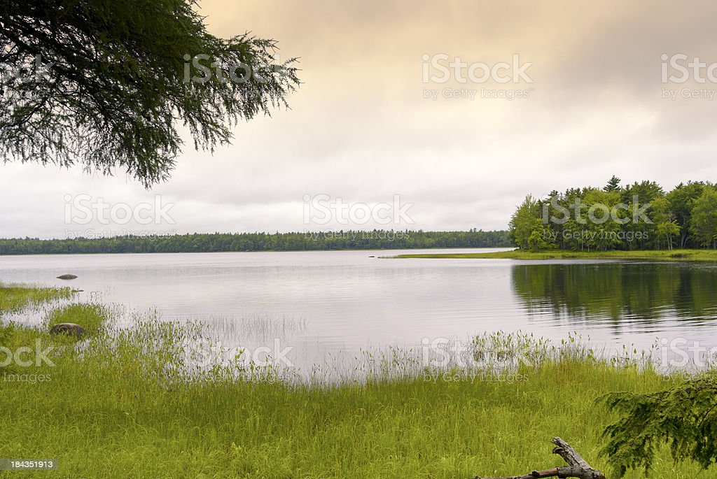 A wide shot of Kejimkujik Lake surrounded by trees. stock photo