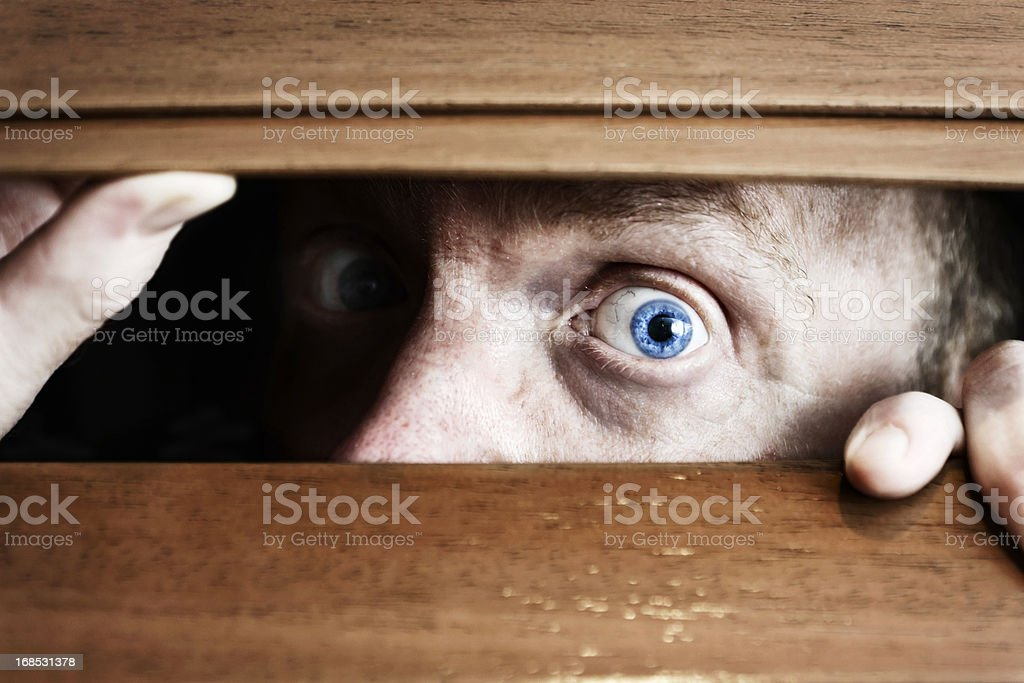 Wide-eyed, frightened man peeps through wooden blinds apprehensively royalty-free stock photo