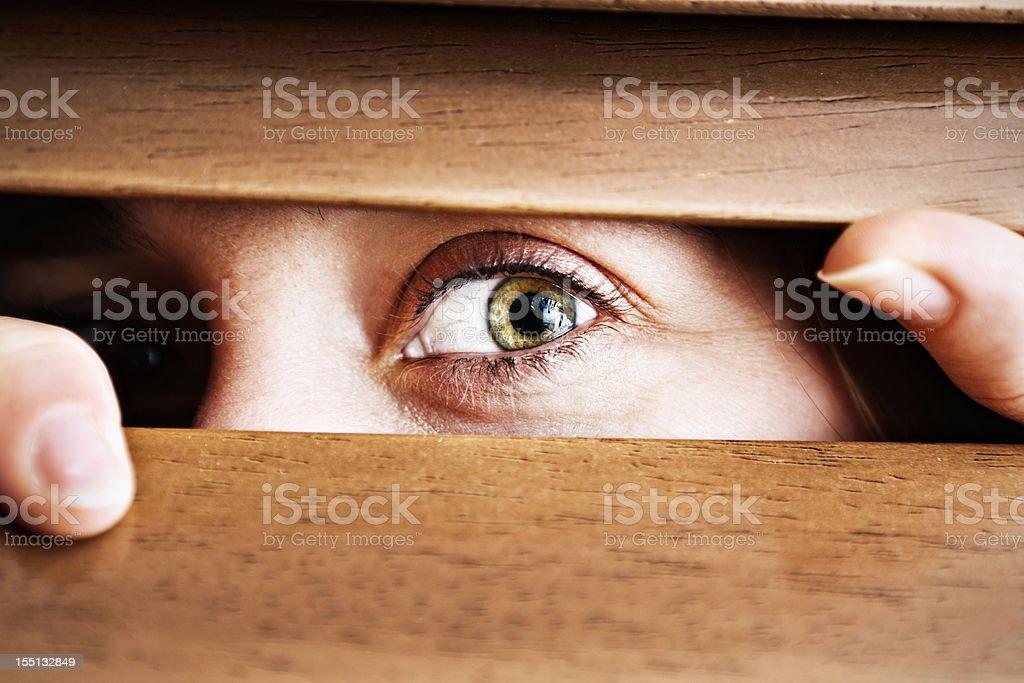 Wide-eyed worried woman peeping through wooden venetian blind stock photo