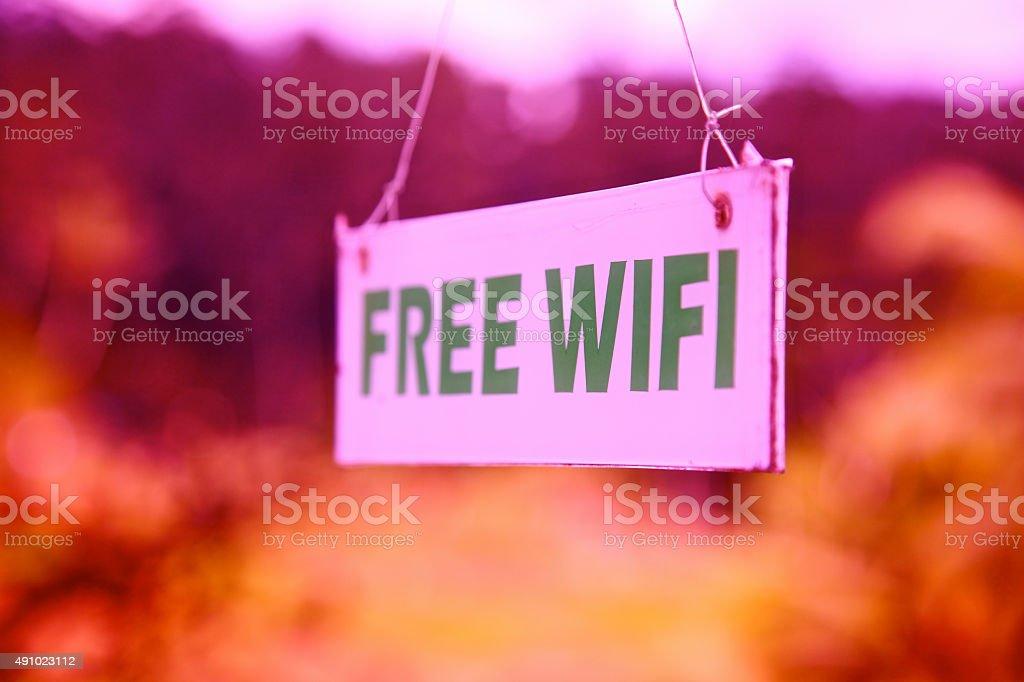wi-fi free wifi sign wireless computer internet area network PINK stock photo