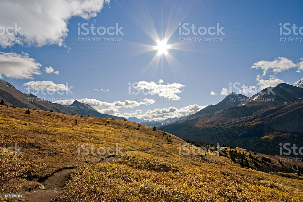 Wilcox Pass, Jasper National Park, Alberta, Canada royalty-free stock photo
