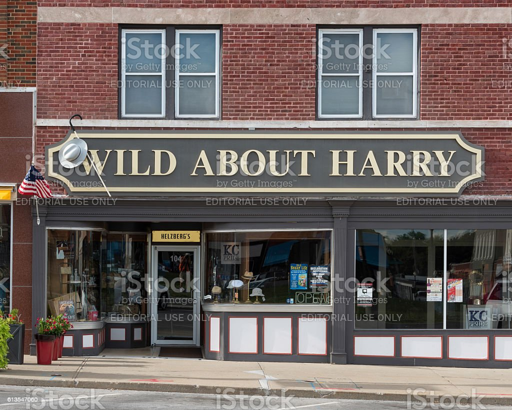 Wild About Harry store stock photo