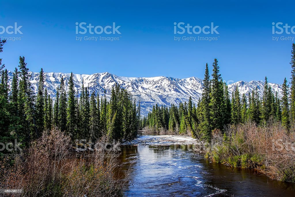 Wild Alaskan River with rapids stock photo