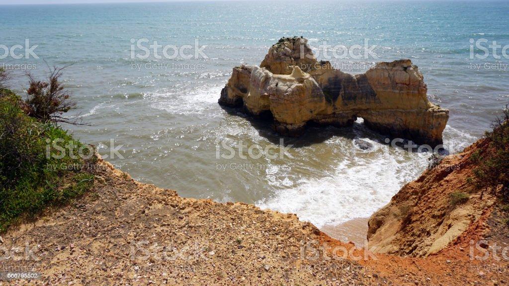 wild argarve coast stock photo