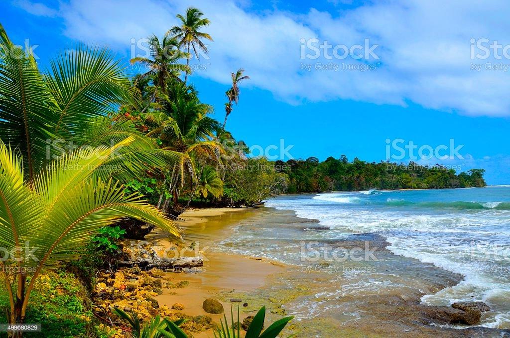 Wild beach Bocas del Toro in Panama stock photo