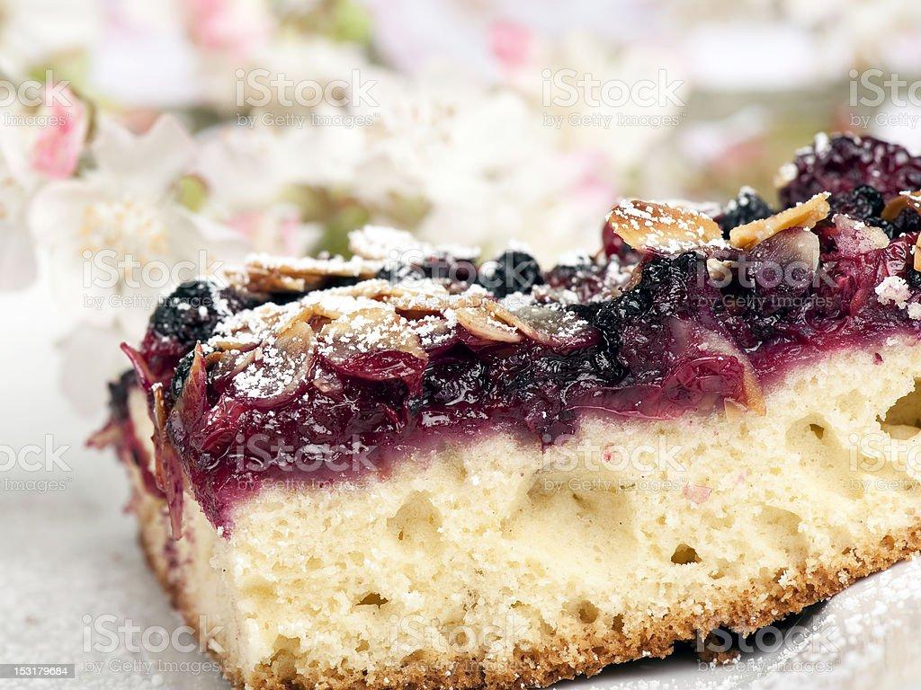 Wild berries cake royalty-free stock photo
