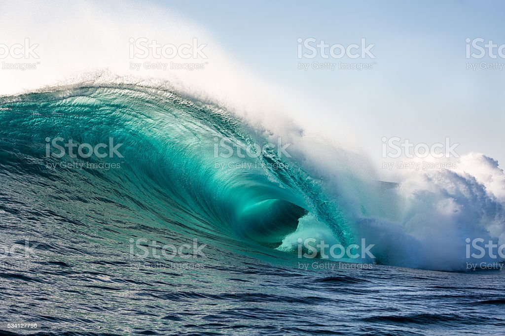 Wild blue stock photo