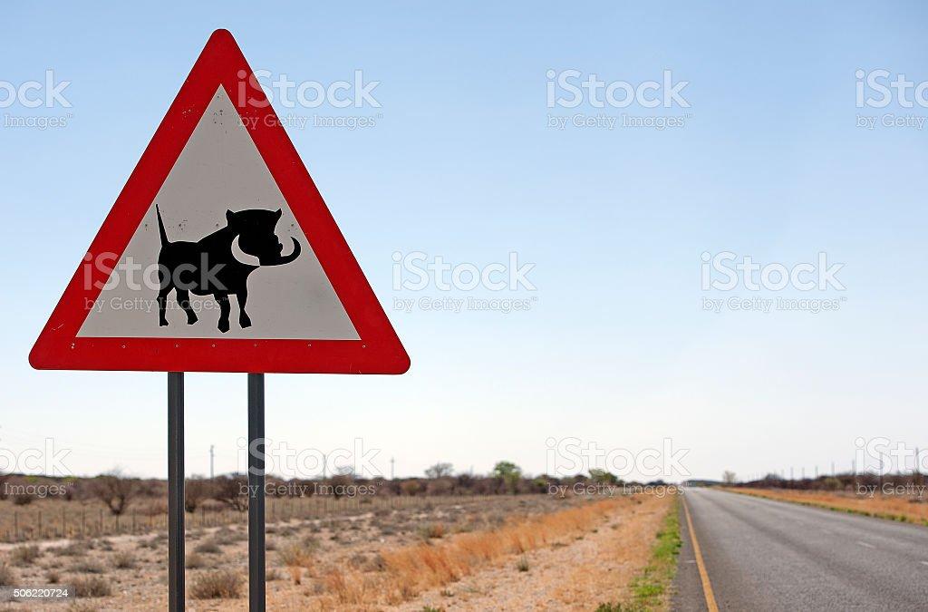 Wild Boar alert on this Namibian roadway stock photo