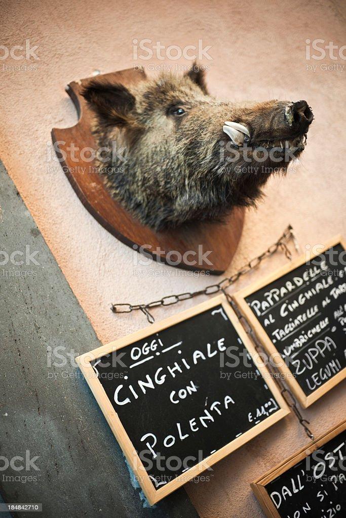 Wild boar head stock photo