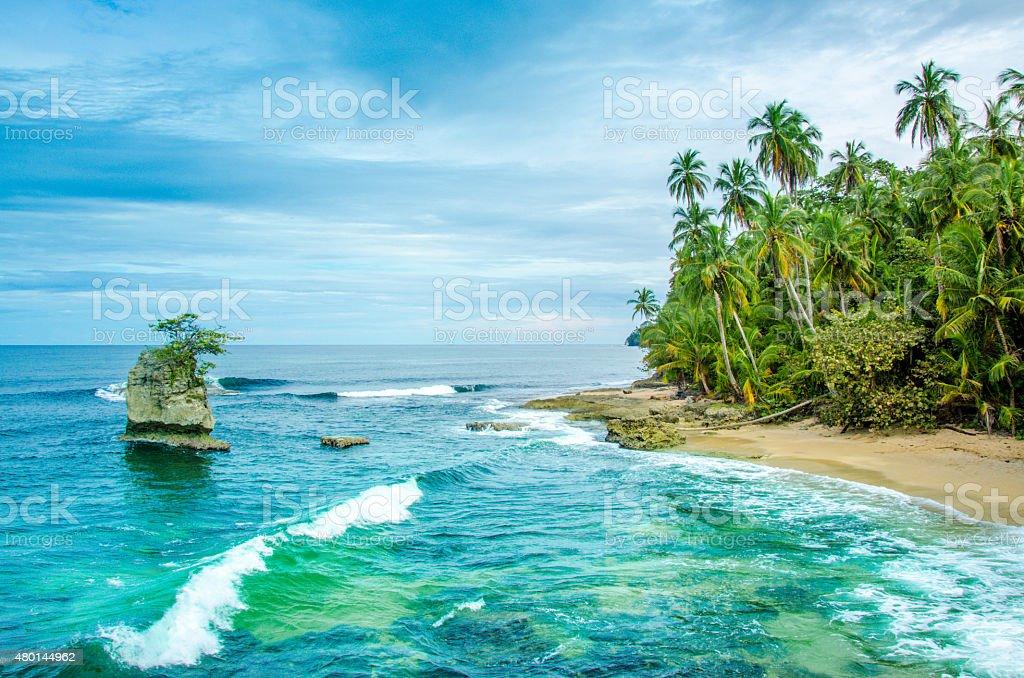 Wild caribbean beach of Costa Rica - Manzanillo stock photo