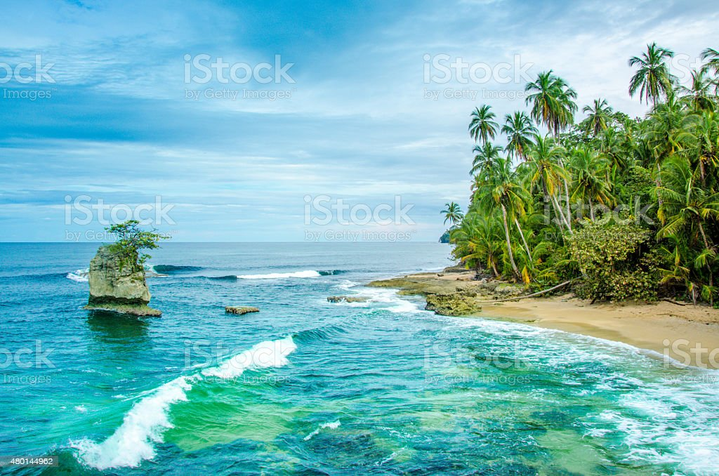 Wild caribbean beach of Costa Rica - Manzanillo stock photo