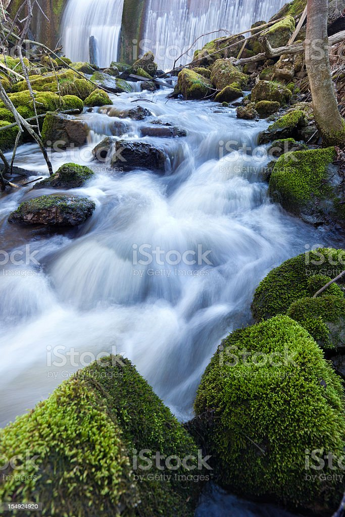 wild cascade with flowing water stock photo
