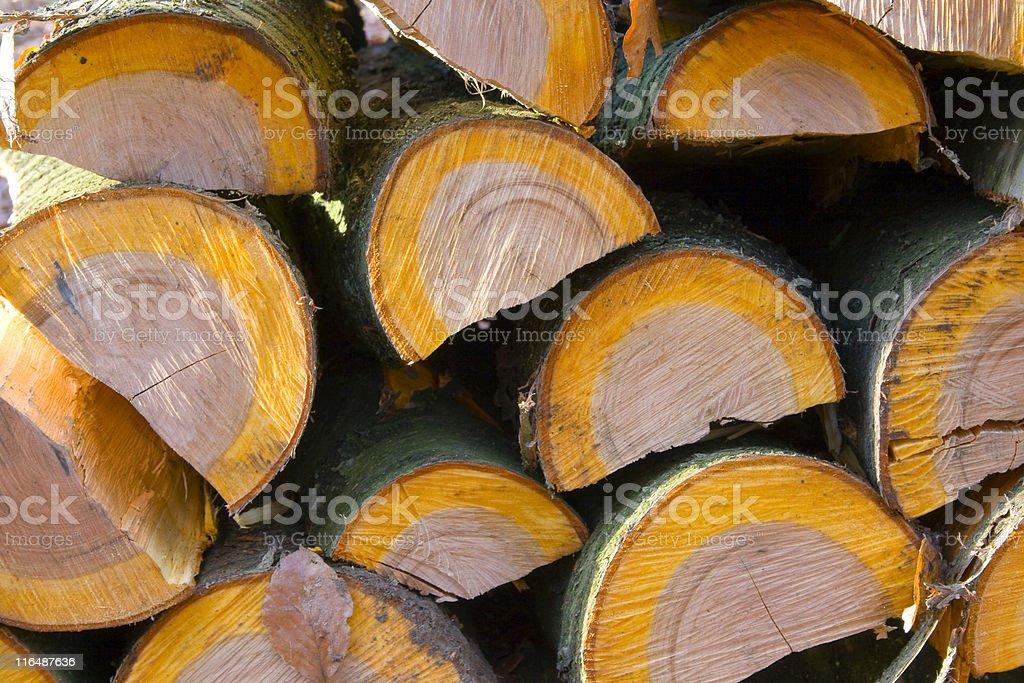 wild cherry firewood stock photo
